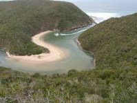 Salt River Mouth